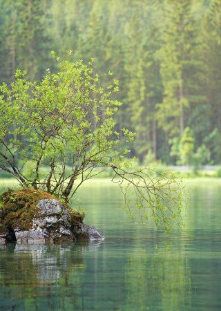 azellus bureau d'étude eau environnement dordogne impact